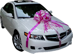 Top 10 Reasons to Buy a Car Bow - Large Gift Bows